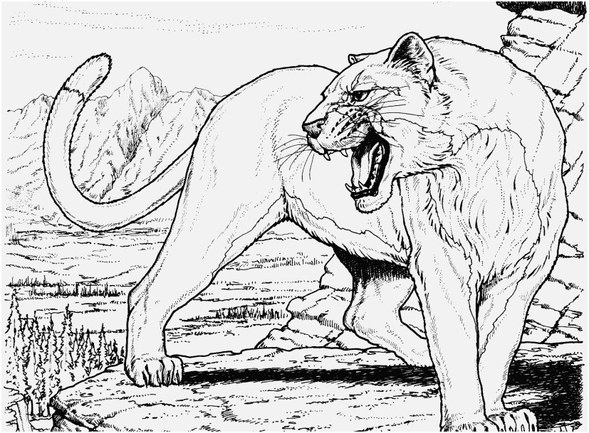 realistic animal coloring pages to print pictures great
