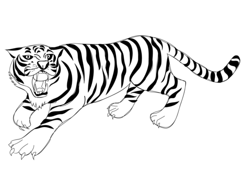 roaring tiger coloring page free printable coloring pages