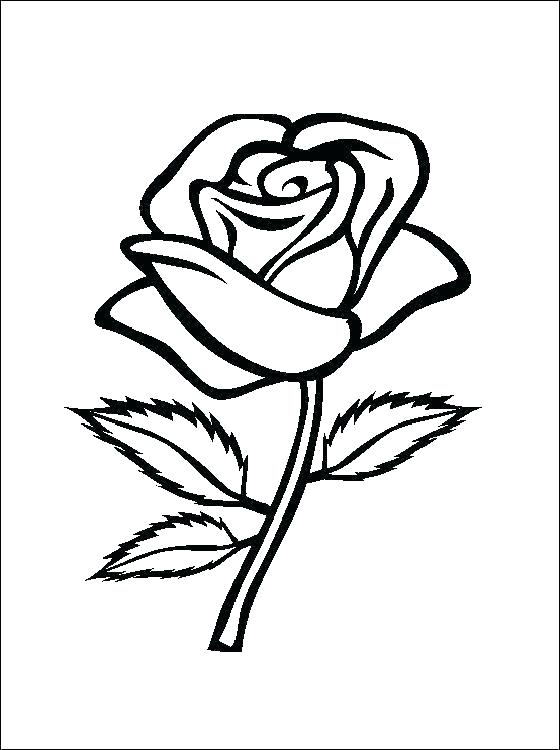 rose coloring pages printable schuelertraining