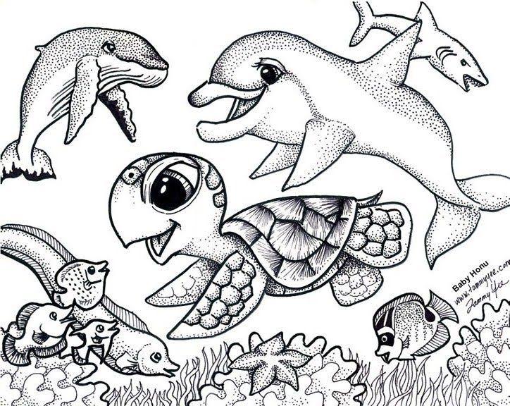 sea turtle coloring pages printable at getdrawings