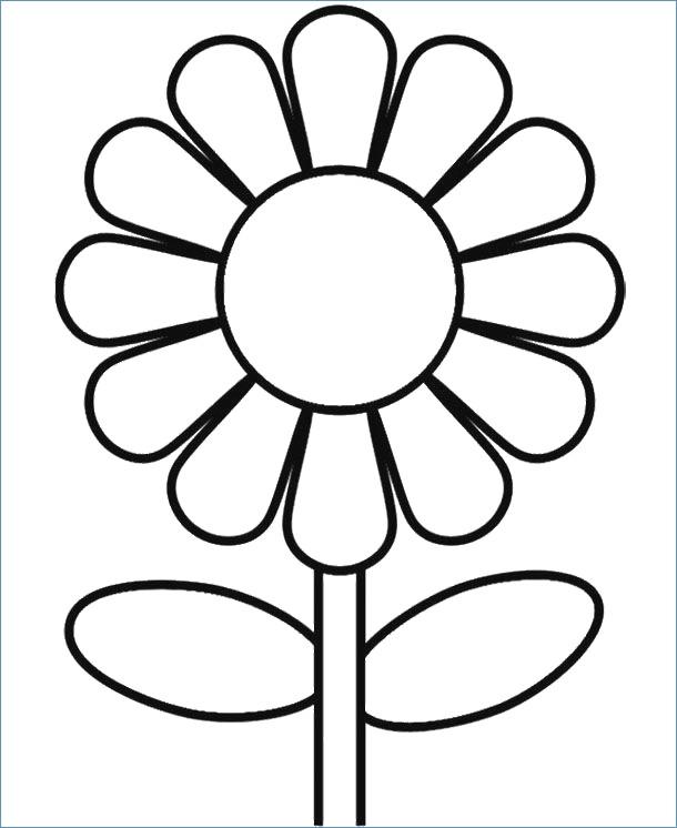 spring flowers coloring pages printable at getdrawings