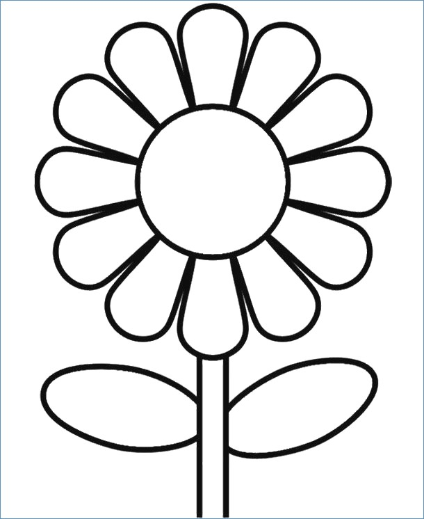 spring flowers coloring pages printable at getdrawings