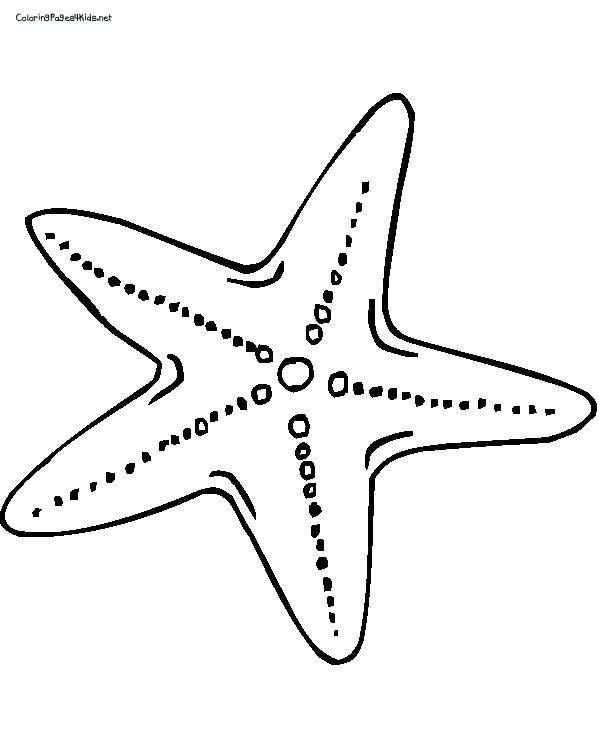 starfish cartoon star star fish colouring pages fish