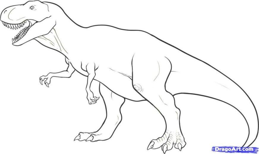 t rex coloring page dinosaur drawing dinosaur coloring
