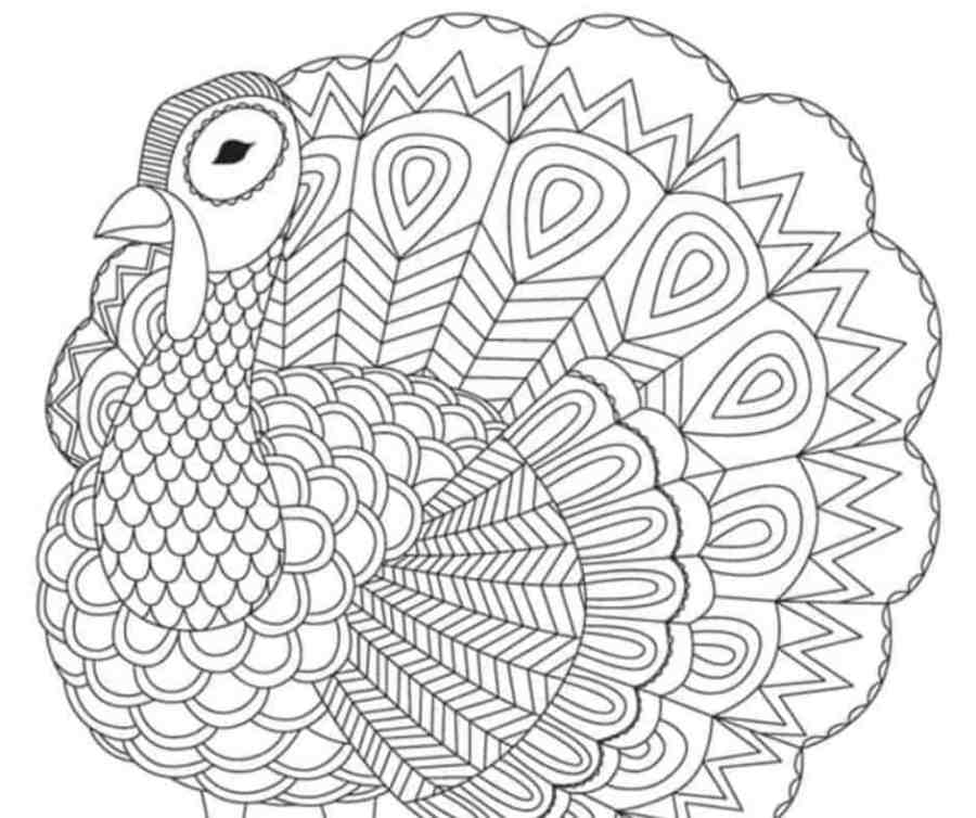 the cutest free turkey coloring pages skip to my lou