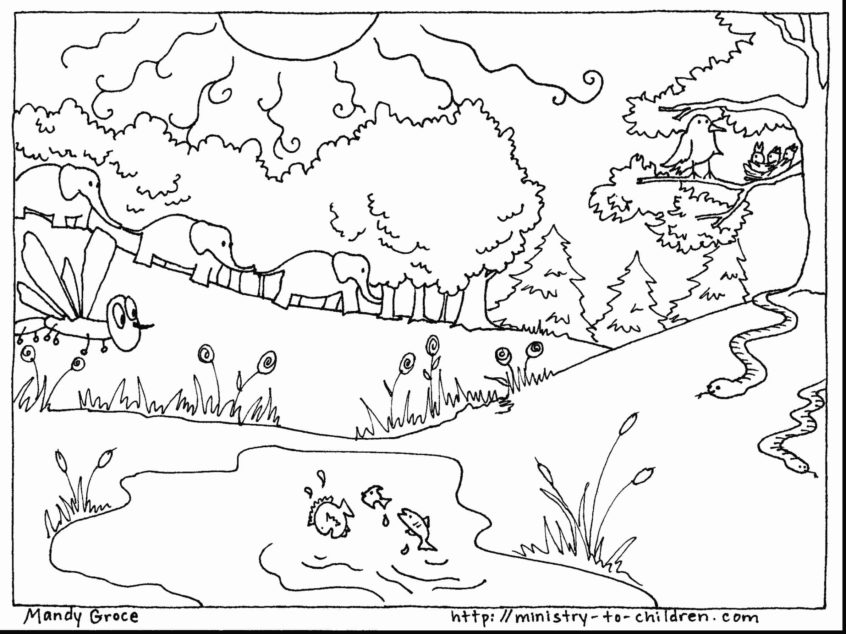 top coloring pages days of creation coloring at getdrawings