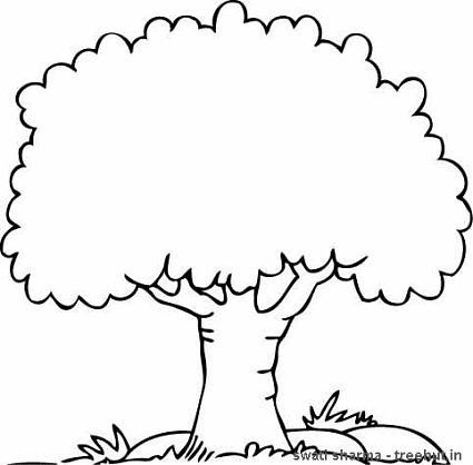 tree coloring pages printable coloring pages sheets for