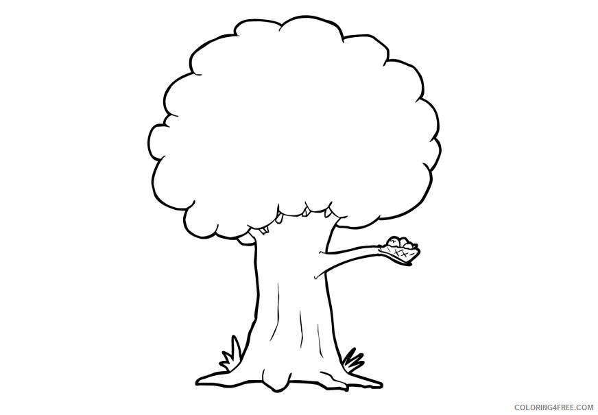 tree coloring pages with bird nest coloring4free