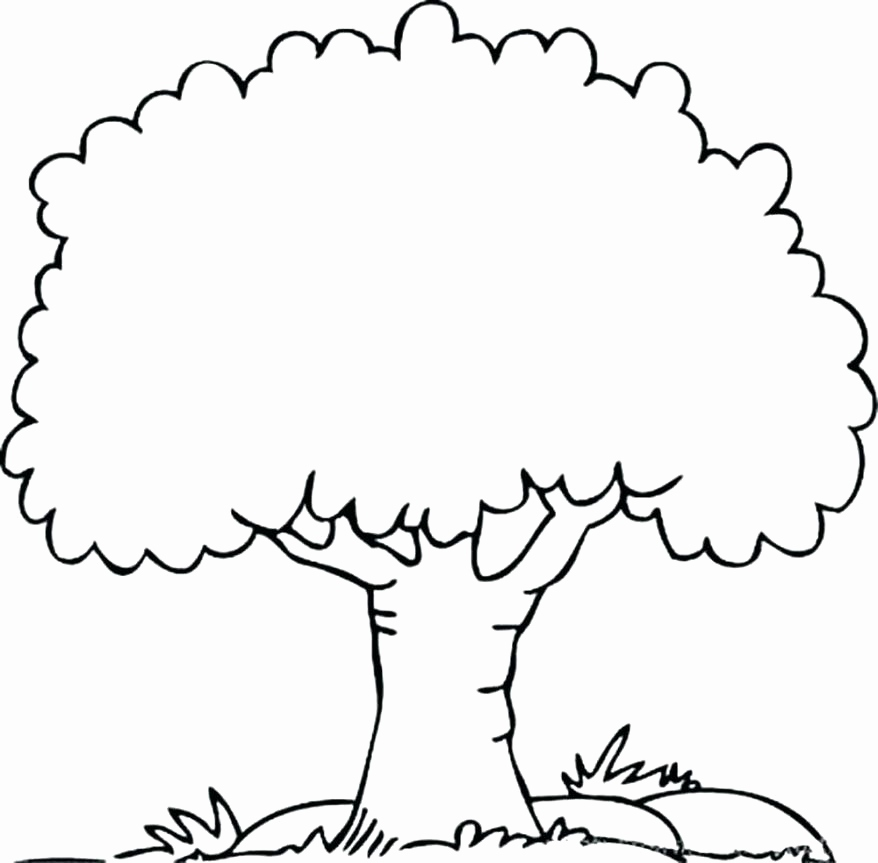 tree coloring pages with roots at getdrawings free for