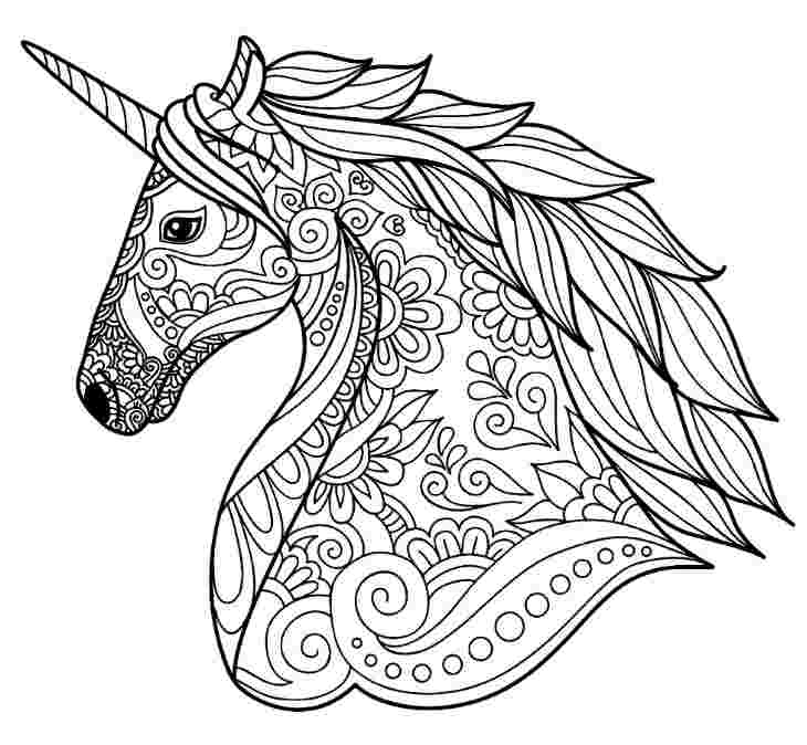 unicorn coloring pages detailed huangfei