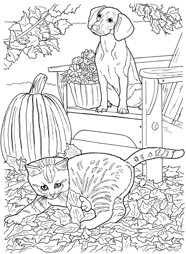 welcome to dover publications dog coloring page cat