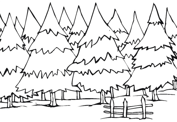 winter tree coloring page at getdrawings free for