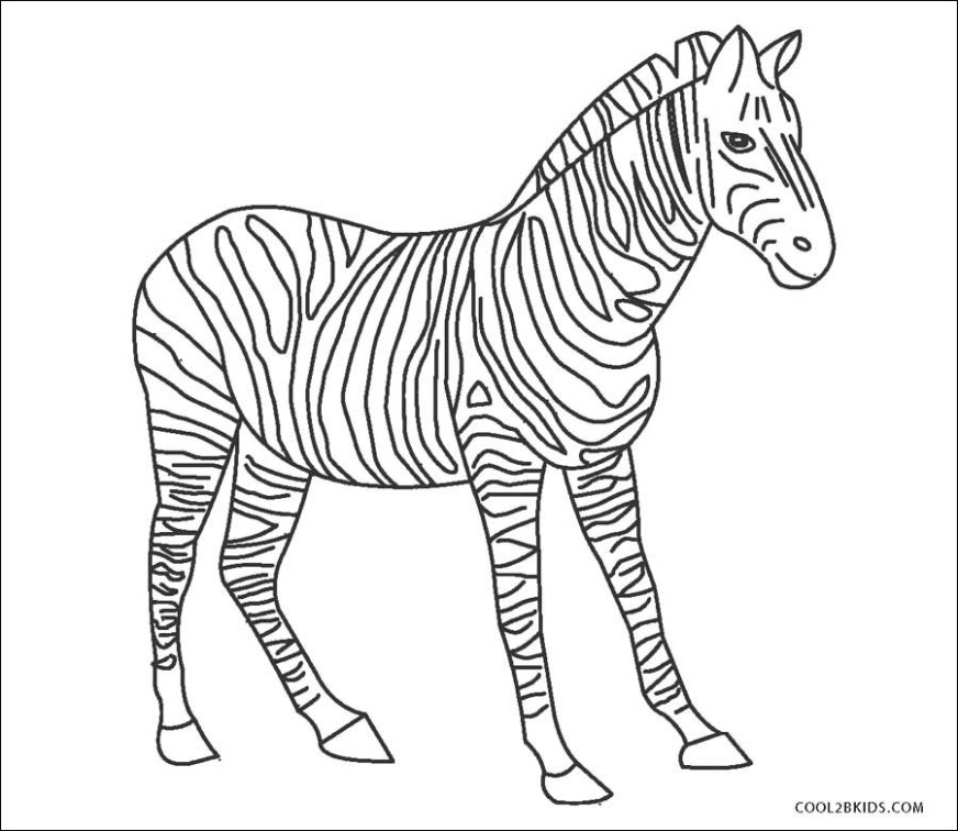 zebra coloring page elegant photography printable zebra