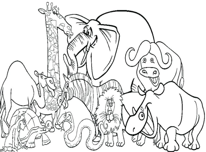 zoo animal coloring page cute ba animals pages free