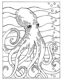 adult colouringunder the sea fishmermaidsshells