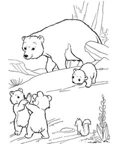 free printable polar bear coloring pages for kids 1st