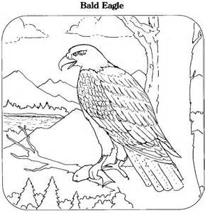 printable coloring book bald eagle coloring page animals