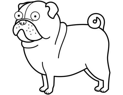 dibujo de perro pug para colorear dibujos para colorear