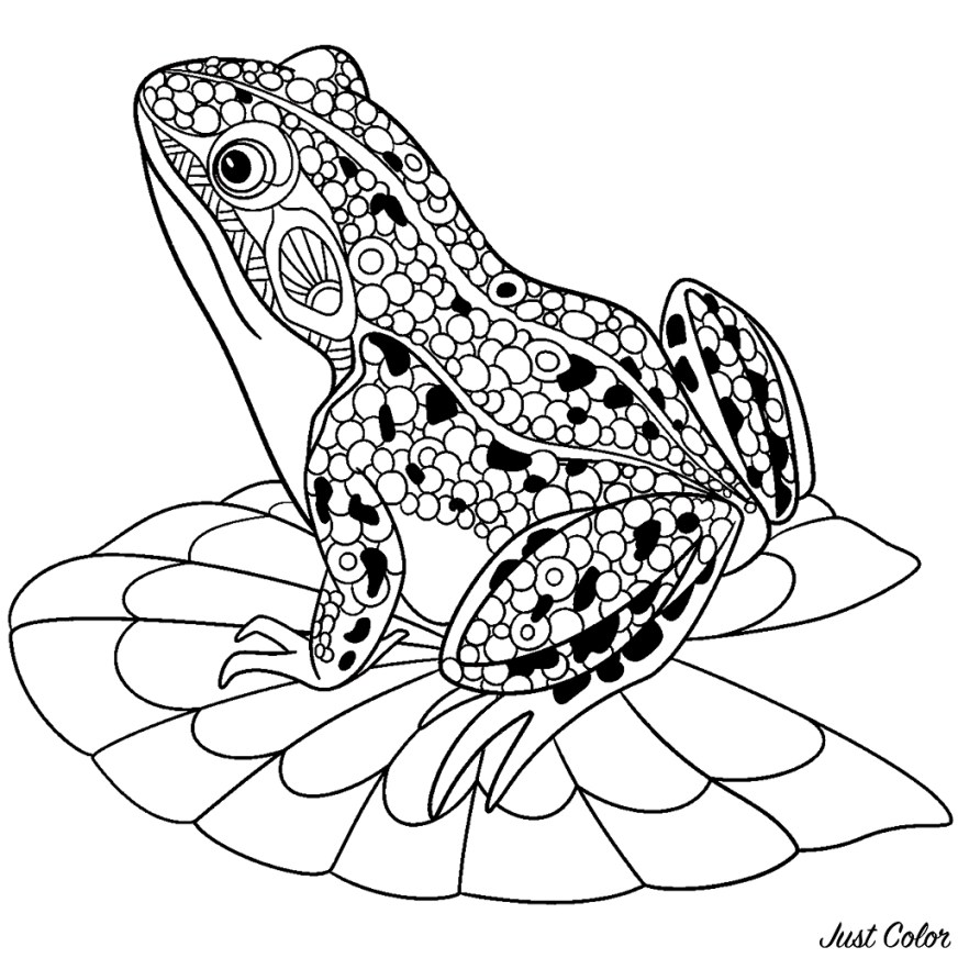 frogs free to color for children frogs kids coloring pages