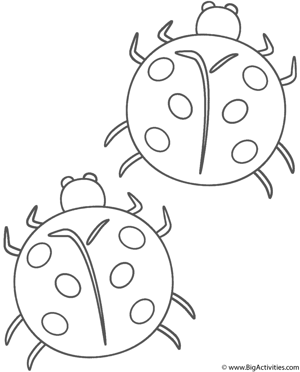 two ladybugs coloring page insects