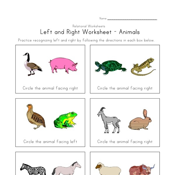 left and right worksheet all kids network