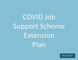 covid support scheme extension