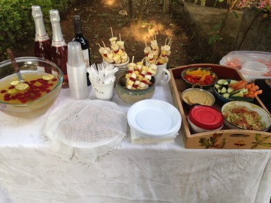 Another shot from the bridal shower I threw