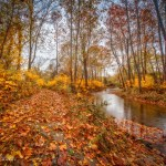 Shenandoah Valley Calendar - October 2017
