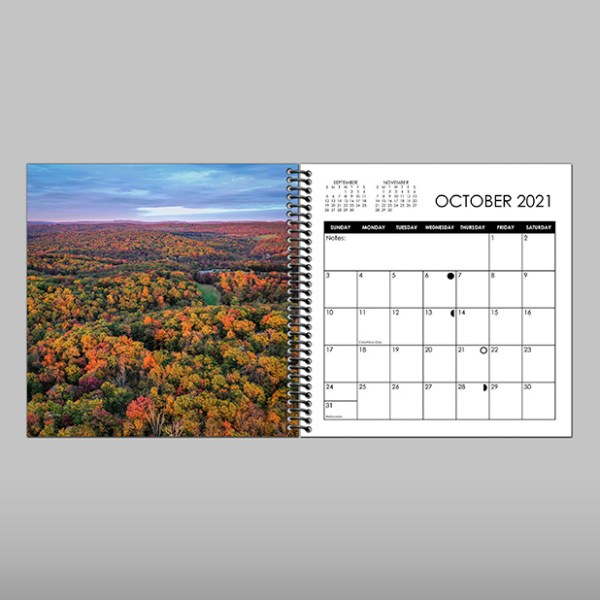 2021 Calendar 8x8 Sample Month