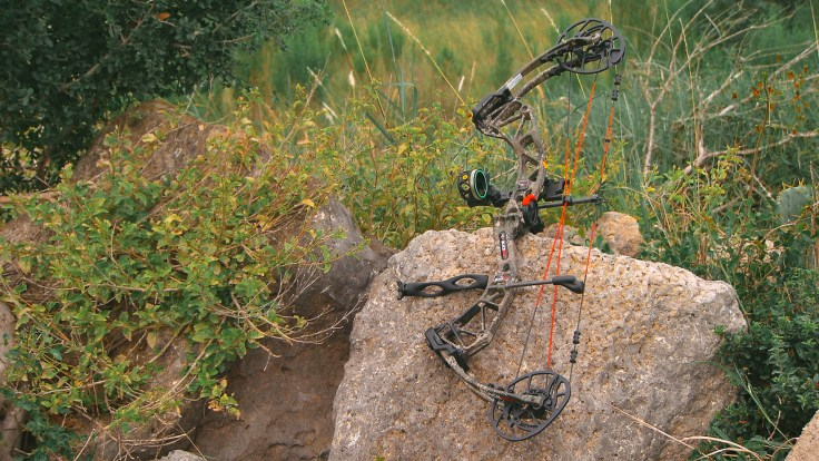 BlackOut Compound bow