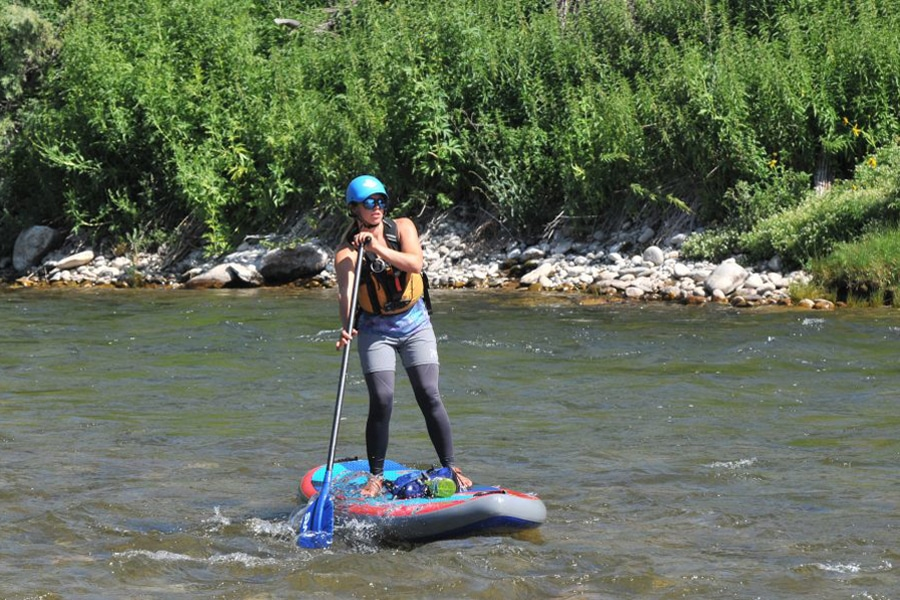 Stand-up Paddleboard Tours.