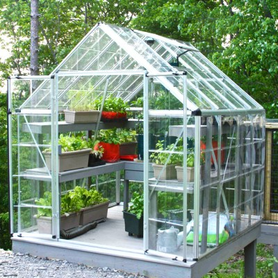 A Greenhouse Of My Own