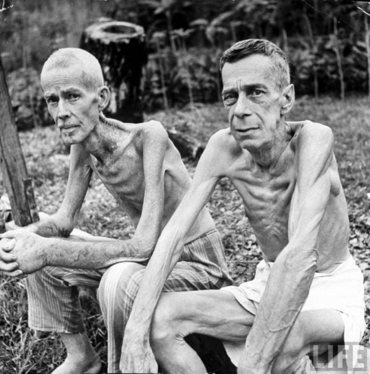 Image result for talking about japanese concentration camp