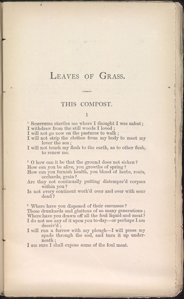 This Compost Leaves Of Grass 1871 72 The Walt