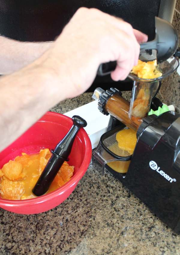 Juicing Citrus with the Healthy Juicer