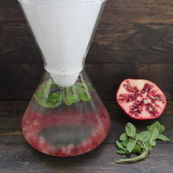 Pomegranate Mint Infused Water
