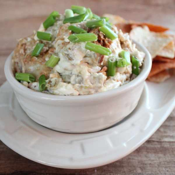 Pulled Pork Dip Recipe