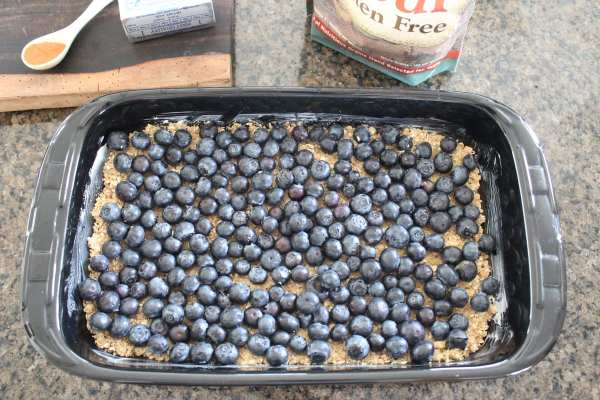 Gluten Free Blueberry Oat Bar Recipe