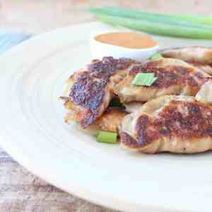 Thai Peanut Chicken Pot Stickers