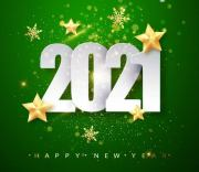 The New Year 2021