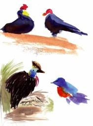 Birds Speed Watercolor