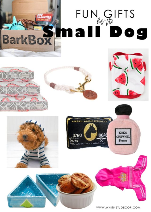 gift ideas for small dogs | gift ideas for puppies | gift ideas for maltipoos