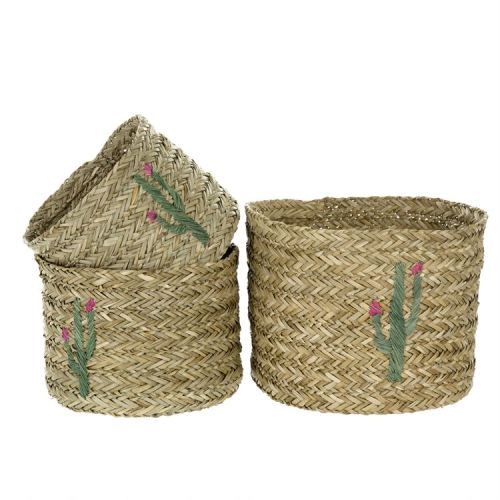 cactus seagrass baskets