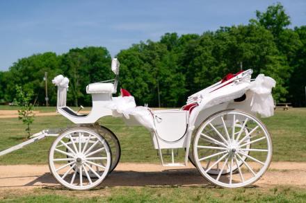 White Wedding Carriage