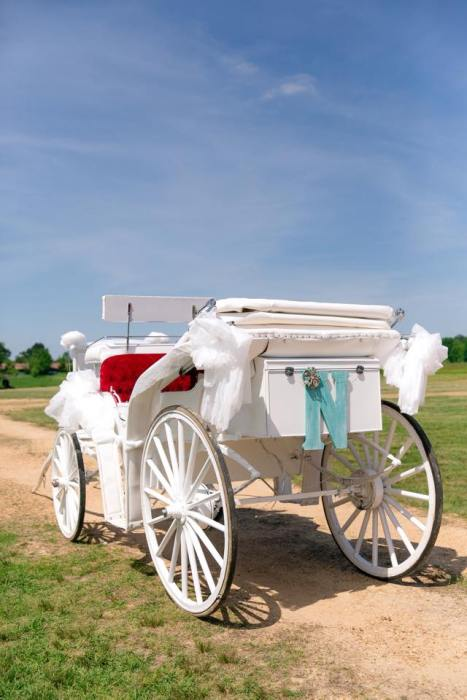 Alabama Wedding Carriage