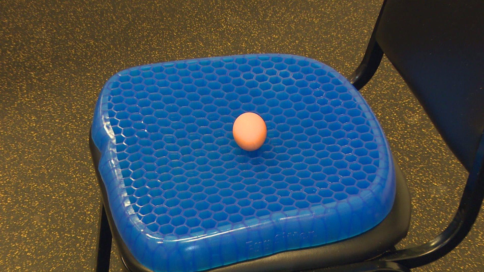 the egg sitter cushion