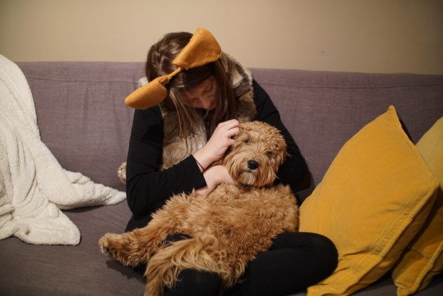 Odin getting some snuggles