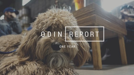 Odin \\ One Year