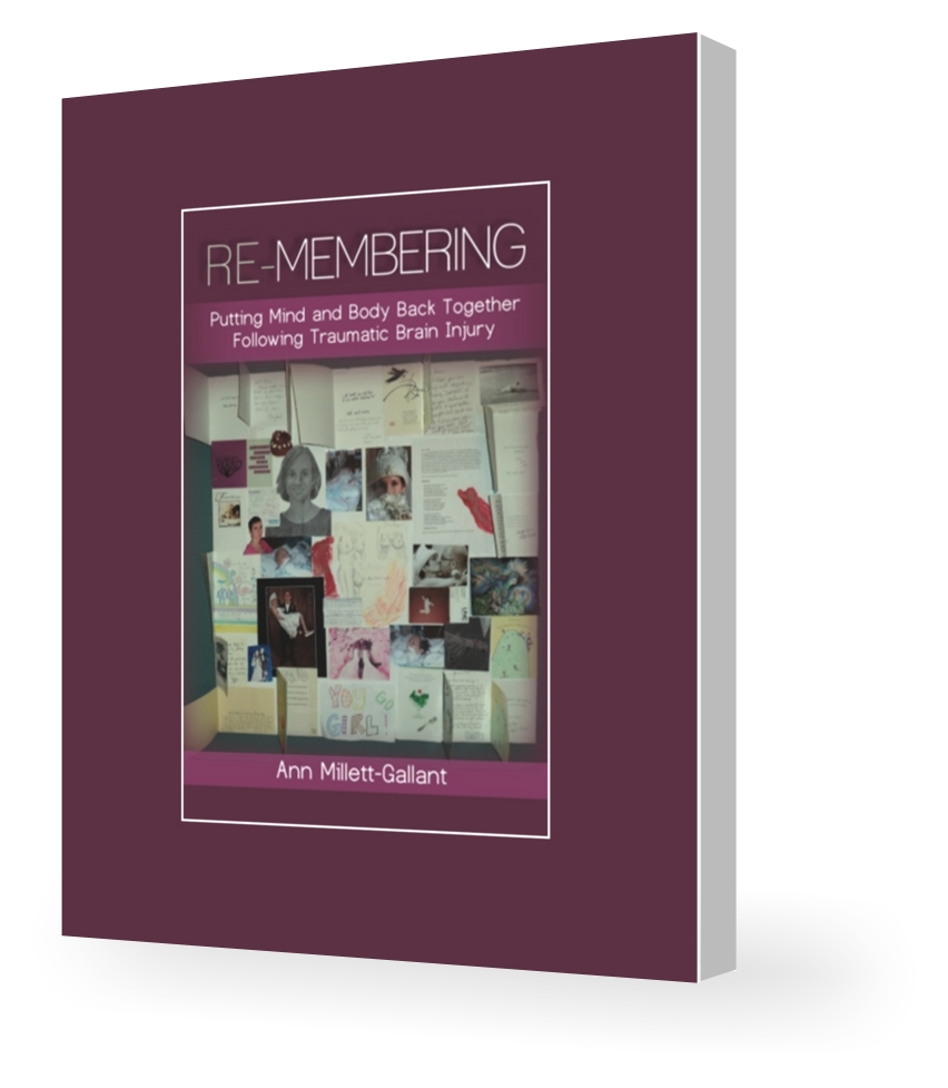 Fushia colored soft cover book with the title and author. The middle shows a collage