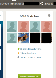 Will My DNA Match My Siblings?